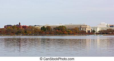 panorama, washington dc, fall., bassin marée
