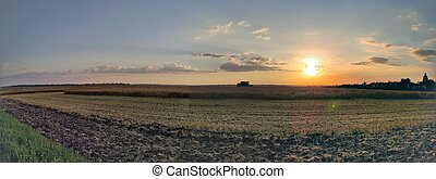 Panorama with a combine harvester on the agricultural field against the backdrop of the setting sun