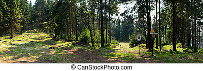 Panorama with Czech border in the forest