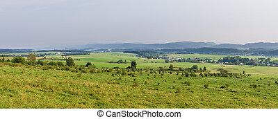 Panorama with polish meadows