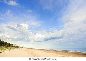 Panorama with sea , beach and  vegetation