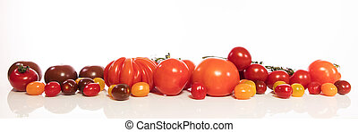 panorama with various tomatoes