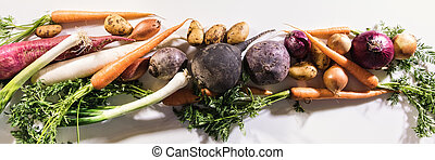 panorama with vegetables
