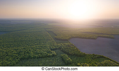 Panoramic aerial view of a lake among the forests on the sunset, top view