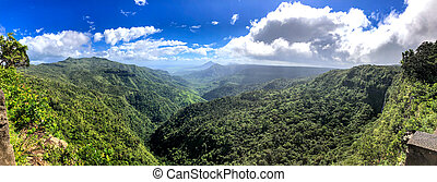 Panoramic aerial view of Tropical Forest on a sunny day