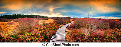 Panoramic autumn landscape with wooden path at sunset. Fall nature background