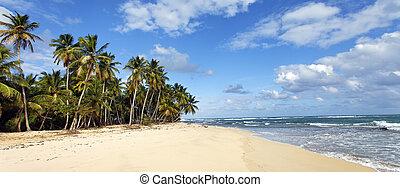 panoramic beach