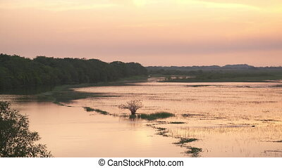 Panoramic |Casanare Wetland Plain, Colombia - Wide high...