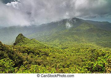 Panoramic El Yunque