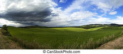 Panoramic fields