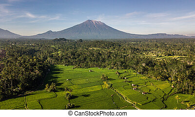 panoramic green meadows with volcano