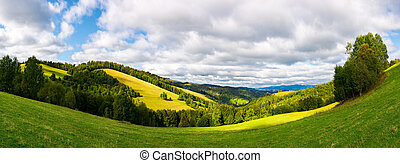 forested hills with meadows on a sunny day - panoramic...