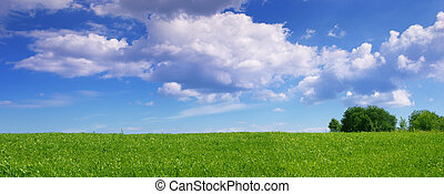 Panoramic landscape - Panoramic view of green summer fields ...