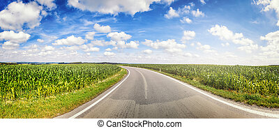 Panoramic landscape with country road and corn fields