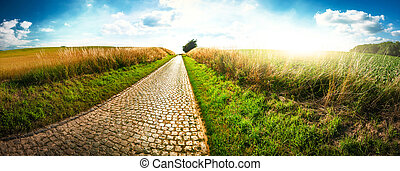 Panoramic landscape with country road. Nature background