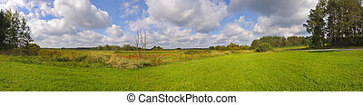 Panoramic landscape with meadows under cloudy sky