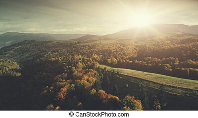 Panoramic mountain forest slope scenery aerial view -...