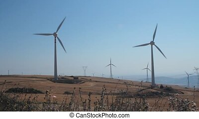 Panoramic of field of wind turbines
