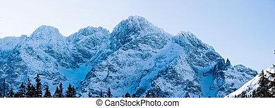 Panoramic Polish Tatras in winter