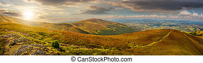 panoramic summer landscape in Carpathians at sunset -...