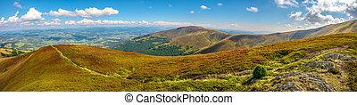 panoramic summer landscape in Carpathians - panoramic summer...