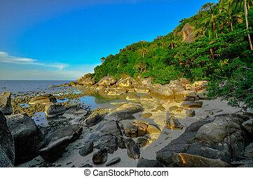 panoramic tropical beach with coconut palm. Koh Samui,