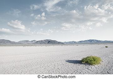 panoramic view od dry desert in dea