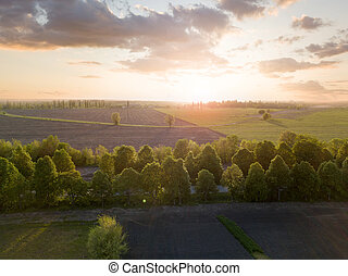 Panoramic view of a large field at sunset. Photo from the drone