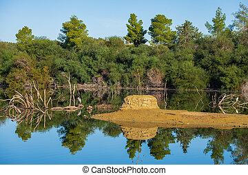 Athalassa Lake in Cyprus with beautiful reflections of the sky, trees and birds on a beautiful sunny morning