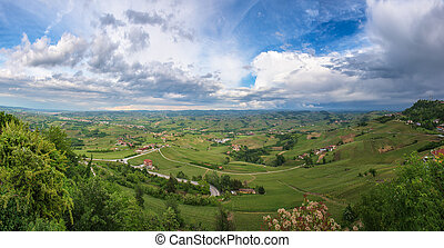 Panoramic view of Barolo vineyards, Piedmont, Italy