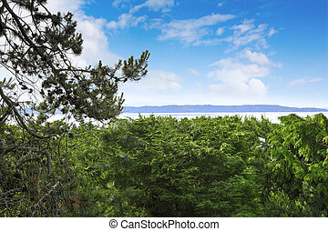 Panoramic view of bay during summer time, Washington state