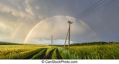 Panoramic view of beautiful Russian landscape. Double rainbow over green wheat fields and power lines