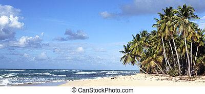 panoramic view of caribbean beach