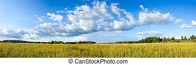 Panoramic view of clouds and meadow