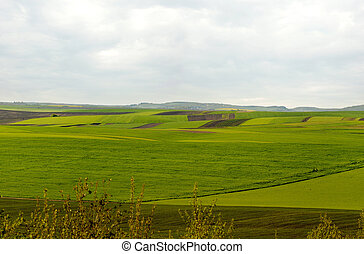 panoramic view of geometric patchwork of gardens, agricultural lands, farmland in springtime