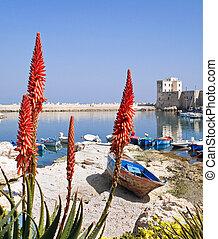 Panoramic view of Giovinazzo seaport.