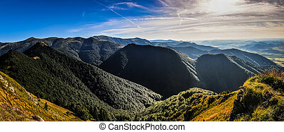 Panoramic view of green summer mountains