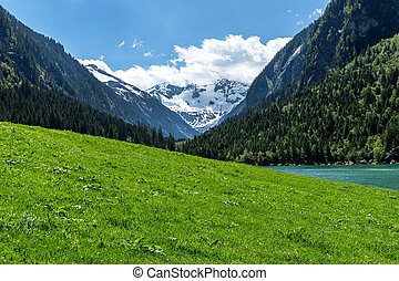 Panoramic view of idyllic mountain scenery in the Alps with fresh green meadow and snowy covered mountain peaks, Zillertal Alps Nature Park, Austria, Tyrol, Stilluptal Lake