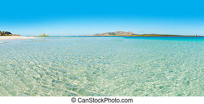 panoramic view of La Pelosa beach
