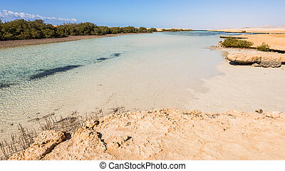 Panoramic view of mangroves in the Ras Mohammed, Sharm el Sheikh, Egypt