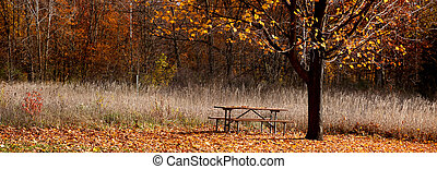 Panoramic view of park - Single picnic bench under autumn ...