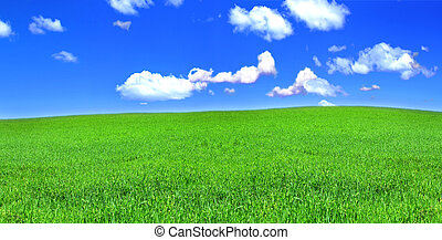 panoramic view of peaceful grassland, blue sky above