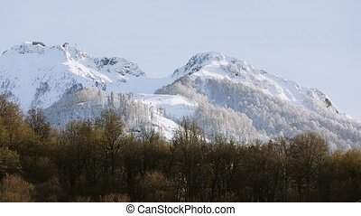 Panoramic view of snowy mountains peaks. Forest at foot of mountain. Nature.
