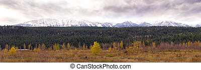 Panoramic view of the Canadian Rocky Moutains taken from the...