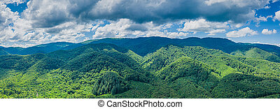 Panoramic view of the Carpathian mountains in summer aerial view