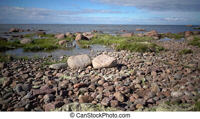 Panoramic view of the stony coast of the Gulf of Finland in...