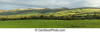 Panoramic view of the Welsh countryside near Garth.