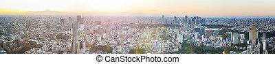 Panoramic View of Tokyo Skyline at Blue Hour in Japan with Mountain Fujiyama In The Background. Panoramic Horizontal Image