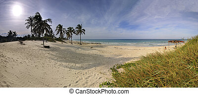 Panoramic view of tropical beach, C