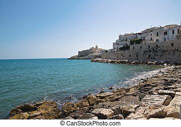 Panoramic view of Vieste. Puglia. Italy.